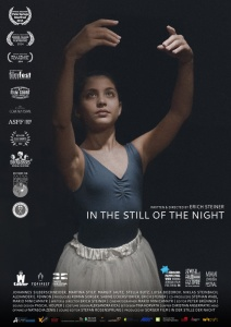 in_the_still_of_the_night_movie_poster