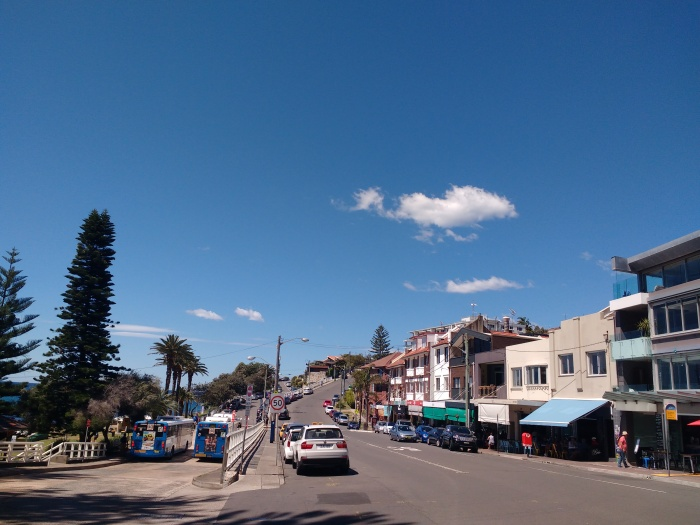 cafes, buses, palm trees, bright blue sky, cars on Bronte Road, Bronte